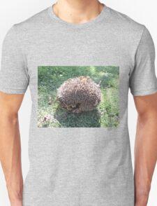 large hedgehog Unisex T-Shirt