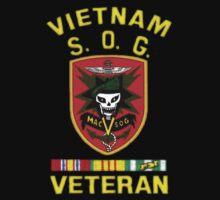 MacVsog Vietnam Veteran by Walter Colvin