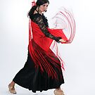 Flamenco dancer 3 by Aleksandar Topalovic