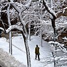 Walking In A Winter Wonderland by April Anderson