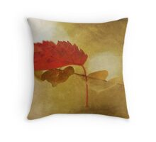 The Beauty of Letting Go Throw Pillow