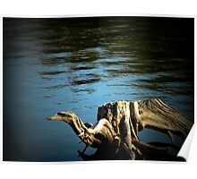 Driftwood Creature Poster