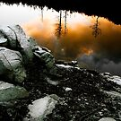 Waves of reflection by Gustav Snyman