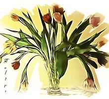 Tulips by Brenda Boisvert