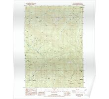 USGS Topo Map Oregon Rooster Rock 281315 1985 24000 Poster