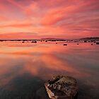 Long Reef Beauty by TimboDon