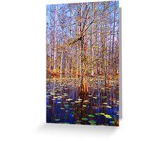 Swamp Scene  Greeting Card