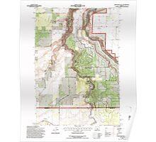 USGS Topo Map Oregon Steelhead Falls 281642 1992 24000 Poster