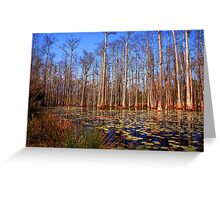 Trees in the swamp of Cypress Gardens SC Greeting Card