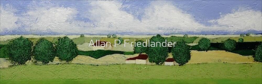 Almost Home by Allan P Friedlander
