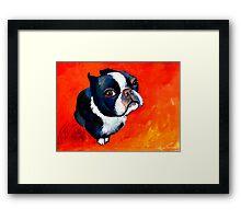 Boston Terrier dog #1 painting Svetlana Novikova Framed Print