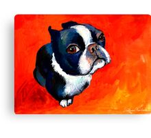 Boston Terrier dog #1 painting Svetlana Novikova Canvas Print