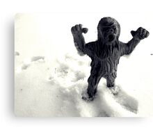 02-08-2011 Winter Threatens aka YETI ATACK!!!! Canvas Print