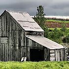 The Hay Shed by Vickie Emms