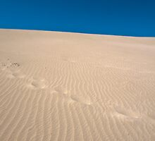 Footprints by Werner Padarin