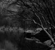 Thule by Ann Eldridge