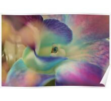 Purple Flower, As Is Poster
