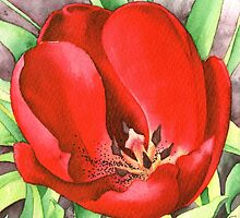 Red Tulip - Watercolour marker painting by Gee Massam