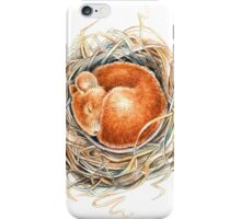 Mouse in the nest iPhone Case/Skin