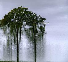 Nature magic by Bluesrose