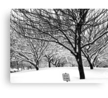 snowy winter day, bronx, new york city Canvas Print