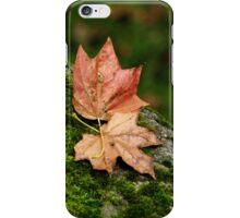 September park iPhone Case/Skin