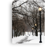 Snowy day in Bronx, New York City  Canvas Print