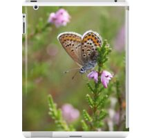 Silver-studded blue on Heather iPad Case/Skin