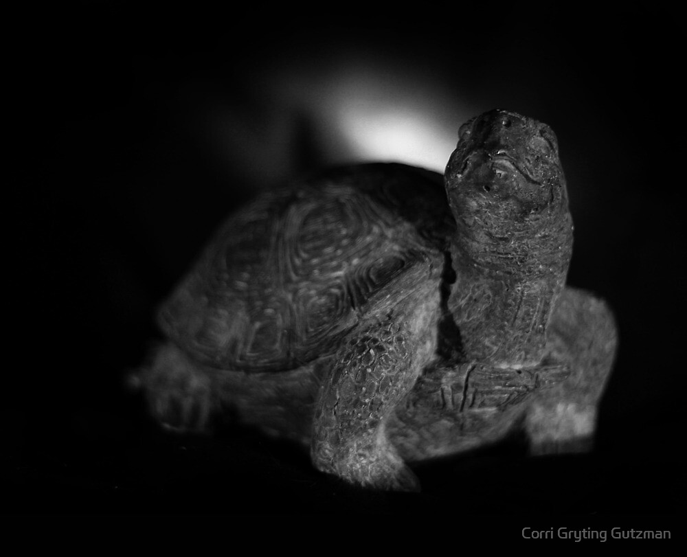 Tortoise Beats the Hare by Corri Gryting Gutzman
