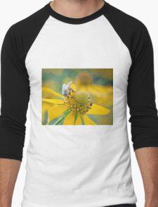 Honey Business Men's Baseball ¾ T-Shirt
