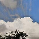 cloudy sky  by nerh
