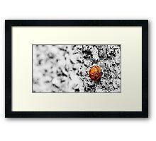 Snail on Render Framed Print