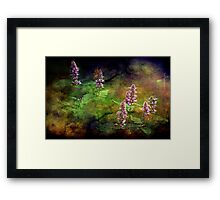 """""""Just An Old Fashioned Garden ...""""  Framed Print"""