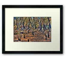 After the fire #3 Framed Print