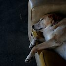 it's MY couch, get it? (hehehe). by geof