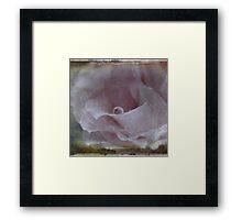 A Droplet of Vintage Rose Framed Print