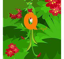 q for quetzal Photographic Print