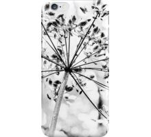 Seed Head iPhone Case/Skin