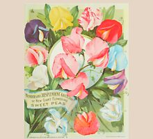 Sweet Peas: 1906 seed catalogue illustration Womens Fitted T-Shirt