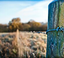 Icy Wire - Little Kingshill by olliema