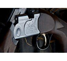 Field gun Photographic Print