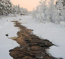 Vassara river by Eivor Kuchta