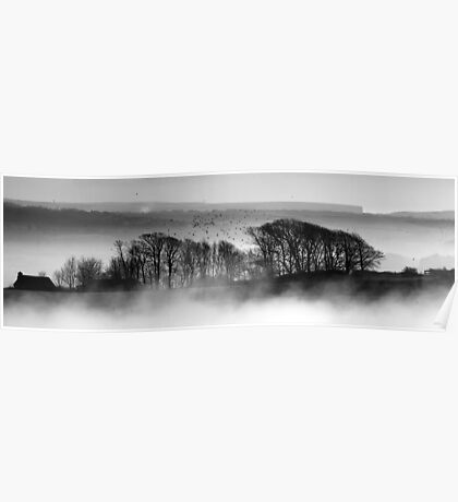 Trees above the Mist Poster