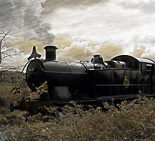 Steam Train at Cranmore station, Shepton Mallet, Somerset, UK  by buttonpresser
