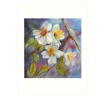 Blossom Time  (early spring) Art Print