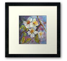 Blossom Time  (early spring) Framed Print