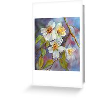 Blossom Time  (early spring) Greeting Card