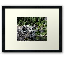 There May Be Trolls 7 Framed Print