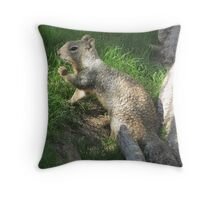 Rock Squirrel ~ Darn! Where's my nuts? Throw Pillow
