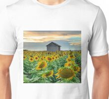 Blowin' in the Wind - Clifton-Allora Qld Australia Unisex T-Shirt